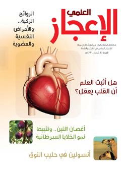 مجلة الإعجاز العلمي - العدد الحادي والأربعون
