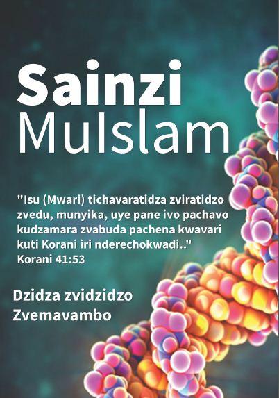 Sainzi Mulslam