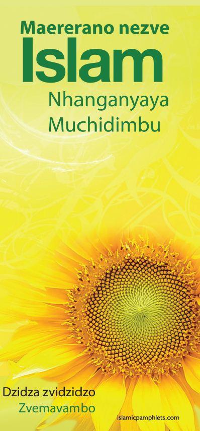 Maererano nezve Islam Nhanganyaya Muchidimbu