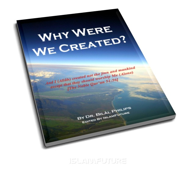 Why Were We Created ?