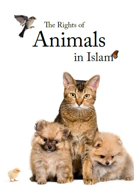 The Rights of Animals in Islam