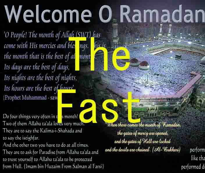 THE FAST Fast_eng