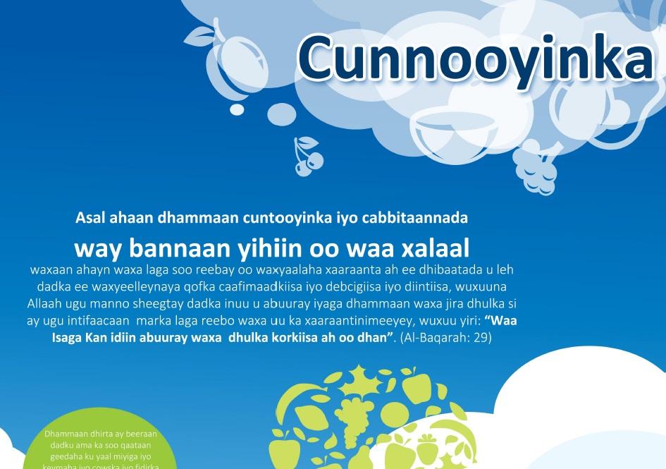 Cunnooyinka